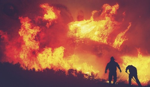 В Москве за 9 дней 2021 года произошло 183 пожара, в ЮЗАО — 16