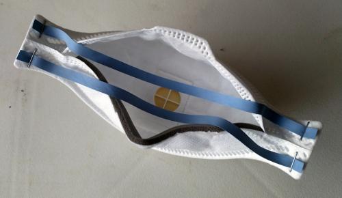 Жителей Австрии обязали носить респираторы вместо масок
