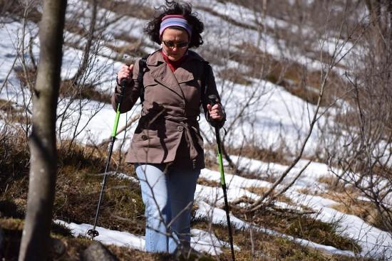 Воронцовский парк организует бесплатные занятия скандинавской ходьбой