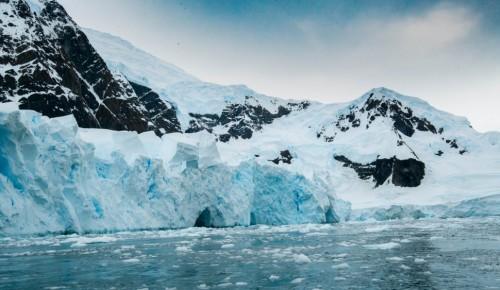 В Воронцовском парке откроется тематическая фотовыставка, рассказывающая об Антарктиде