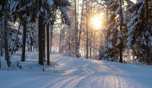Жители и гости столицы могут покататься на лыжах в девяти парках города