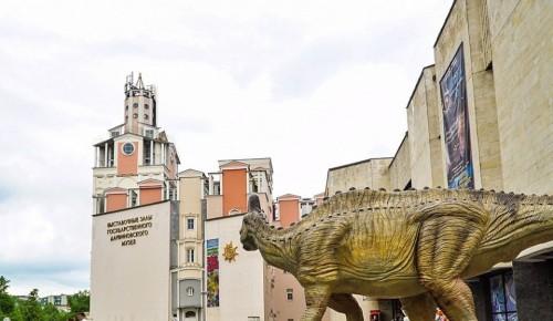 Дарвиновский музей получил в дар таксидермические скульптуры африканских животных