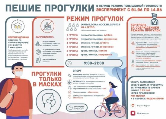 Введение графика прогулок обезопасит москвичей от риска заражения COVID-19