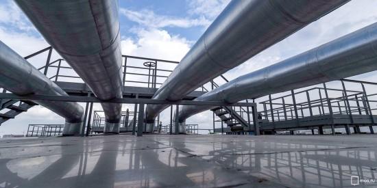 Собянин поздравил москвичей со Всемирным днем окружающей среды
