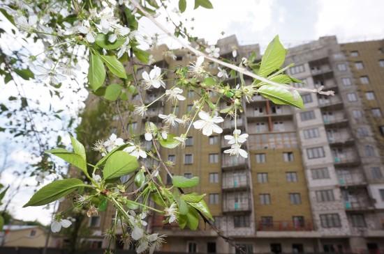 Строительство дома по программе реновации на улице Шверника близится к завершению
