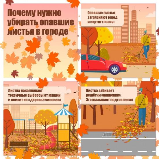 Эксперты рассказали о важности уборки осенней листвы