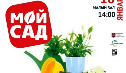 Мастер-класс «Мой сад» пройдет в центре «Меридиан»