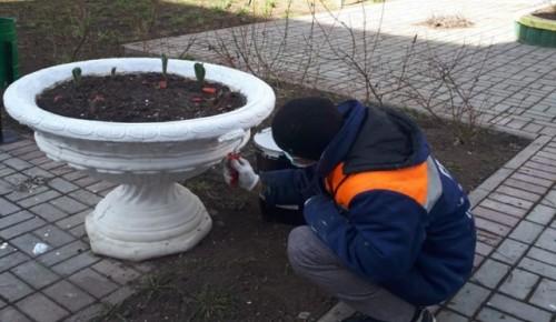 Покраску ограждений проводят коммунальщики в Черемушках