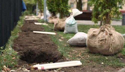 Более 4 тысяч кустарников высадят в Черемушках этой весной