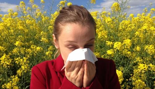 Маски придут на помощь аллергикам