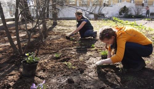Субботники в Гагаринском районе отменили из-за ситуации с распространением коронавирусной инфекции