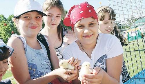 Бесплатные детские лагеря в ЮЗАО открывают вторую смену