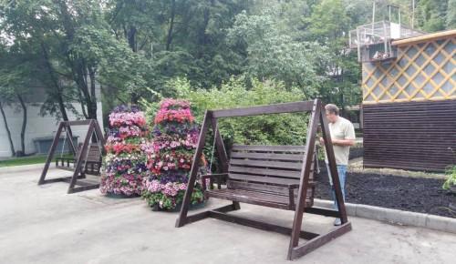 В районе Коньково в этом году высадят живые изгороди