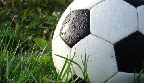 В районе Коньково планируют организовать пространство для панна-футбола