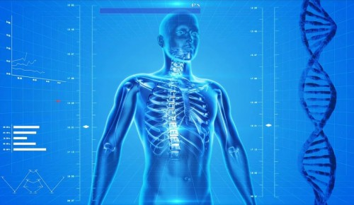 На форуме «Здоровая Москва» обсудили развитие цифровизации здравоохранения