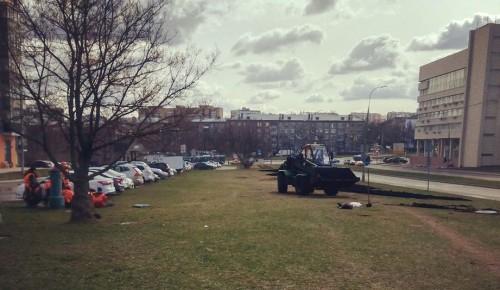 В апреле в Котловке стартовали работы, связанные с озеленением