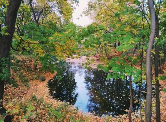 «Закрытый» Коробковский сад оказался доступен для единичных посещений