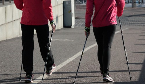 Чемпионка по скандинавской ходьбе живет и тренируется в Ломоносовском районе