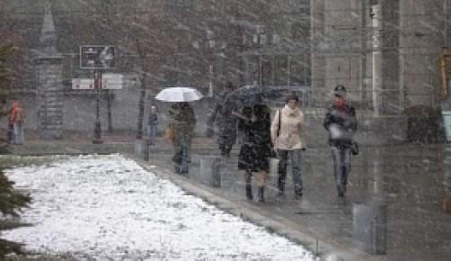 Небольшие заморозки, осадки и гололедица ожидается в столичном регионе