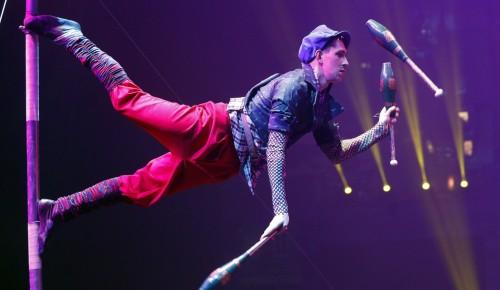 В цирке на Вернадского открыли выставку о праздниках и буднях, надеждах и свершениях
