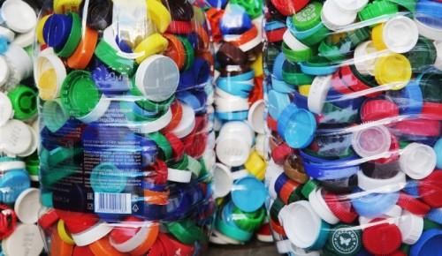 Экологи расскажут о раздельном сборе мусора