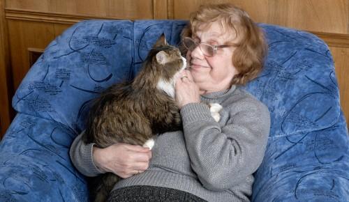 Мэрия Москвы поможет с топливом самоизолировавшимся на дачах пенсионерам