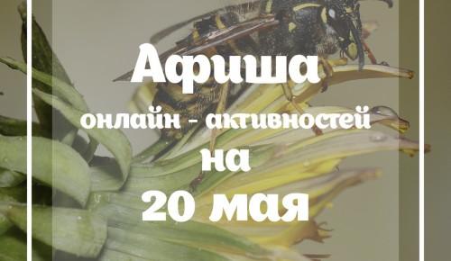 «Пчелиные вопросы» и «Веселая математика»: какие активности подготовила Мосприрода в среду