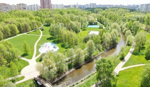 Депутат Мосгордумы: Озеленение города играет весомую роль в повышении комфортности городской среды