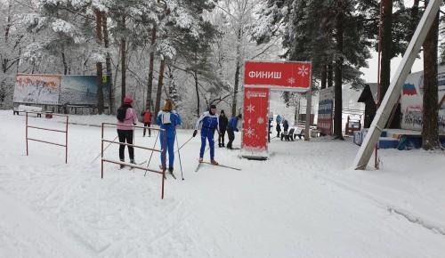 Спортивный комплекс «Альфа-Битца» выступит в серии лыжных марафонов Russialoppet сразу двумя командами