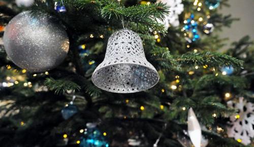 В Москве стартовала акция по экологической утилизации новогодних елок