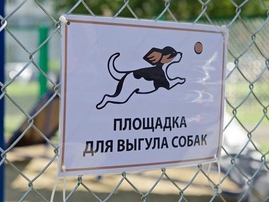 Жителям Северного Бутова напомнили о правилах выгула собак на природных территориях