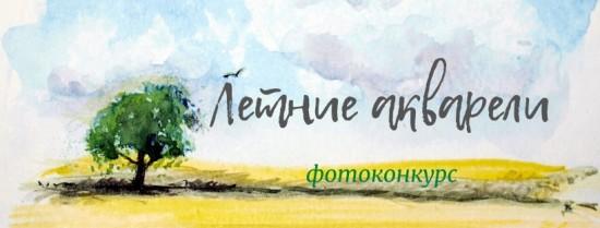 Ясеневцы могут принять участие в летнем фотоконкурсе