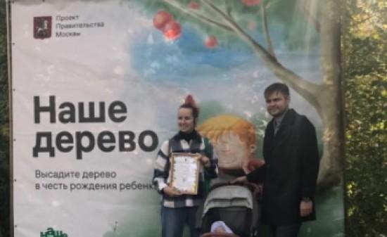 """Городской проект """"Наше дерево"""" продолжит работать в Битцевском лесу"""