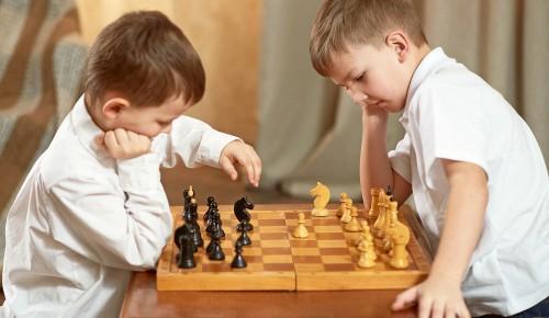 В Палеонтологическом музее прошёл шахматный турнир