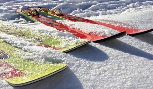 Новогодние каникулы юные экологи из Зюзина провели в лыжном походе