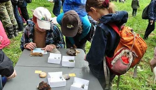 Отборочный этап «Зеленой» олимпиады юных экологов и натуралистов в МФЮА начнется уже на днях