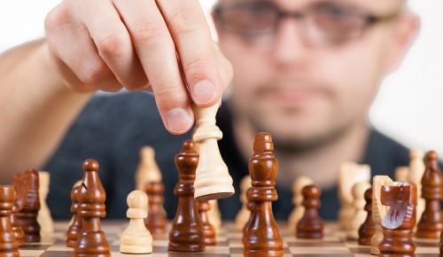 Молодые парламентарии Зюзина и Ломоносовского сойдутся в турнире по шахматам в честь Татьяниного дня