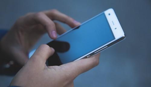 За принятие поправок в Конституцию москвичи проголосуют со смартфонов