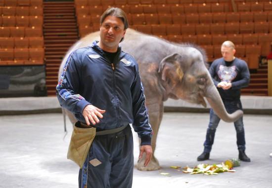 Эдгард Запашный: «Слон – это большой ребёнок»