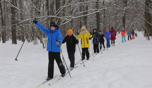 Лыжники в Воронцовском парке