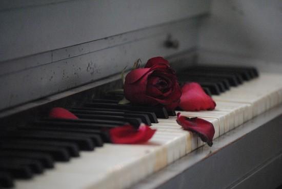 В библиотеке №186 пройдет фортепианный концерт к 8 Марта