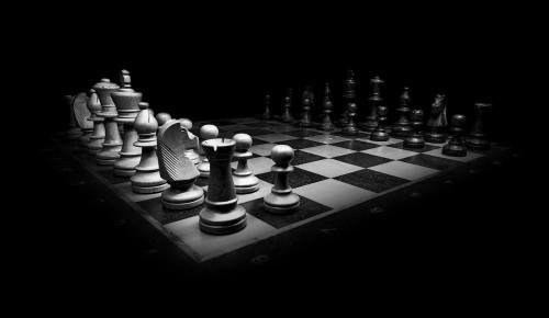 Шахматистка из Гагаринского района одержала победу на московских соревнованиях