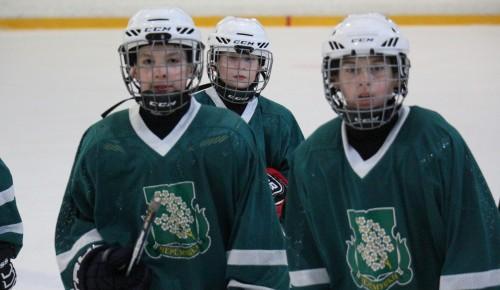 Спортсмены из Черемушек попали в финал городских соревнований по хоккею