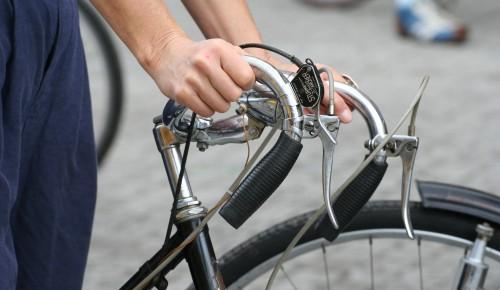Четыре велофестиваля планируют провести в Москве в 2021 году