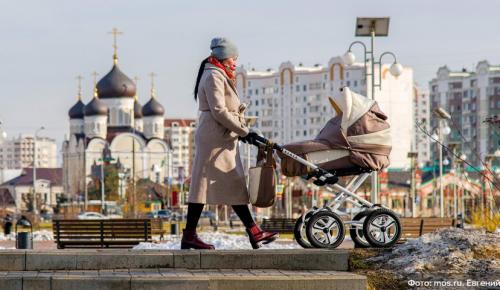 Депутат МГД Щитов: Увеличение возраста получающих пособие родителей улучшит демографическую ситуацию