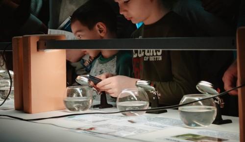 Посетителям Дарвиновского музея показали водных обитателей под микроскопом
