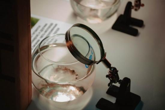 Международный день воды отметили в Дарвиновском музее