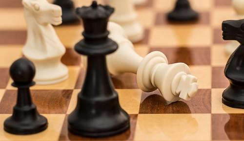В Ломоносовском районе пройдет мастер-класс по шахматам