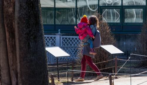 Собянин утвердил порядок назначения новой денежной выплаты семьям с детьми от трех до семи лет