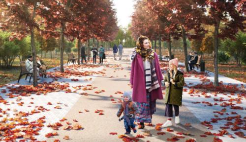 На Красную Пресню вернут деревья, которые исчезли десятилетия назад – Собянин